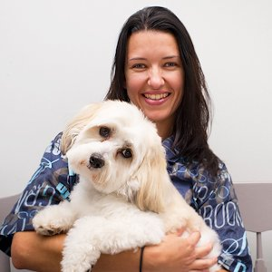 Etobicoke spring pet grooming dog groomers in etobicoke all of us at royal york animal hospital are so happy that spring has finally sprung and that the snow has finally melted we experienced a longer solutioingenieria Choice Image