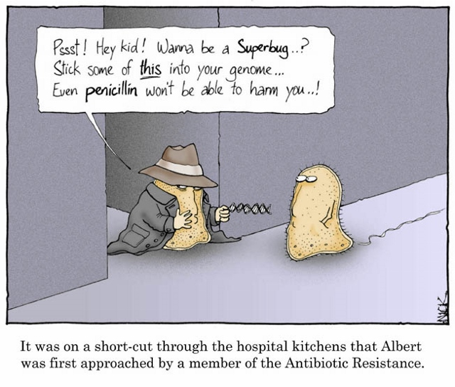 1 Cartoon (Antibiotic Resistance) (2) (640x544)