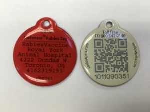 Pet Tags in Etobicoke