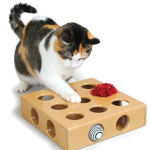 Fun Cat Games