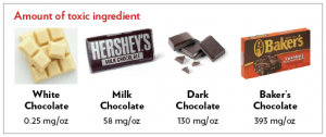 Chocolate is a Toxin for Pets