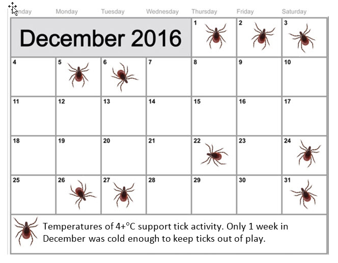 december 2016 calendar with ticks